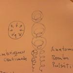 Unidade de pulso e bomba pulsátil